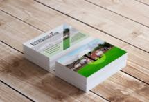 Дизайн, изготовление, печать, визитки, визитные карты, business card, фирменный стиль, полиграфия, графический дизайн