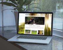 Дизайн, верстка, создание сайта, сайт, WEB, вэб дизайн, SEO продвижение, ведение сайта, поддержка, design, официальный сайт, графический дизайн