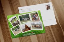 Дизайн, изготовление, печать, открытки, марки, почтовые, полиграфия, графический дизайн